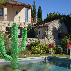 flamant_cactus