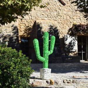 g_cactus_02