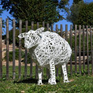 mouton_01