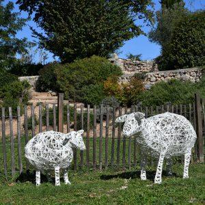 mouton_02