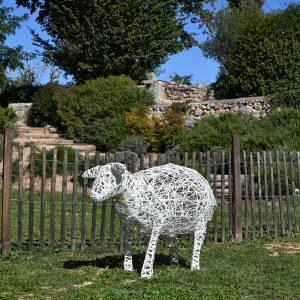 mouton_03