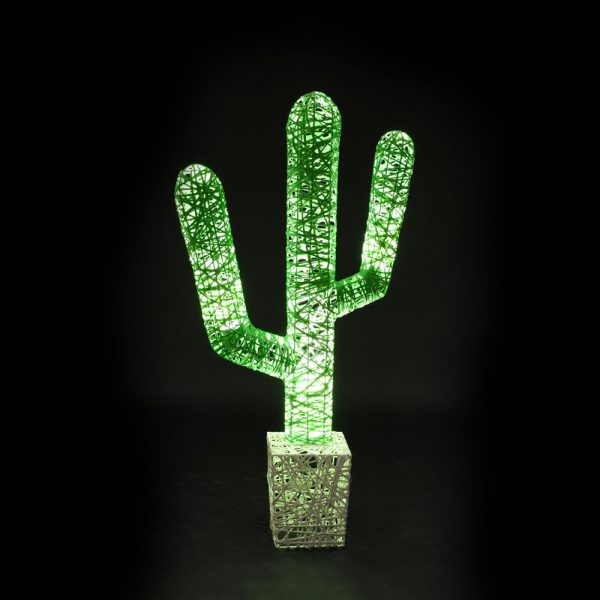 cactus-couleur-1-lum-fd-noir