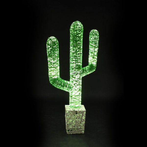 cactus-couleur-4-lum-fd-noir