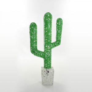 cactus-couleur-4-non-lum
