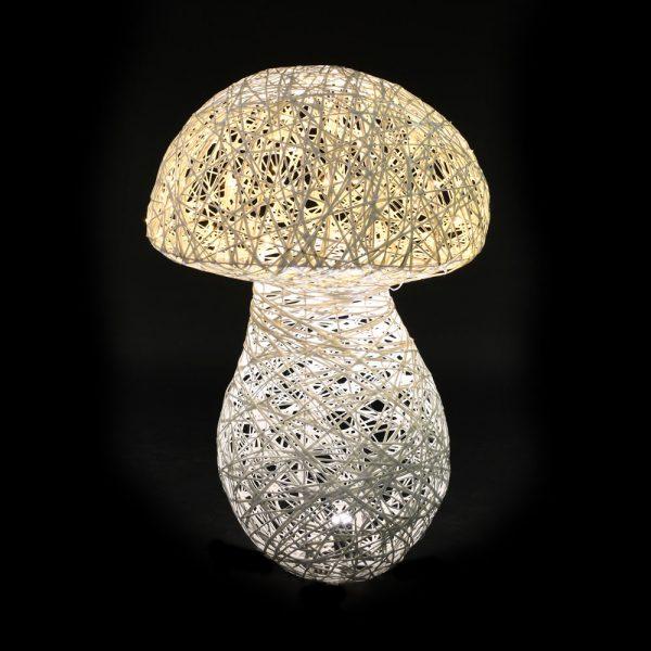 champignon-lum-fd-noir